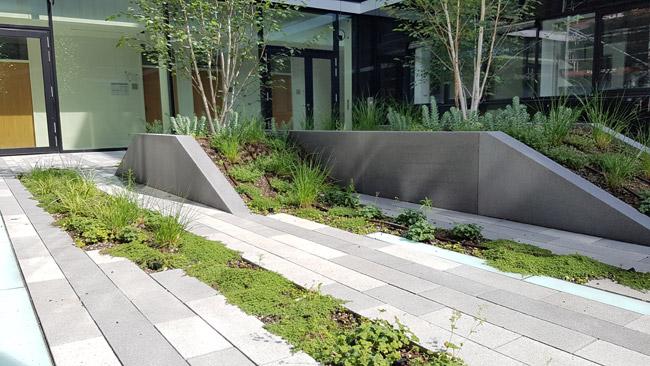 garten gestalten landschaftsbau baumschulen gartengestaltung planung schwimmteichbau. Black Bedroom Furniture Sets. Home Design Ideas